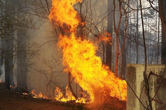 A brush fire burned several acres behind South High Community School in Worcester, Massachusetts in 2012.