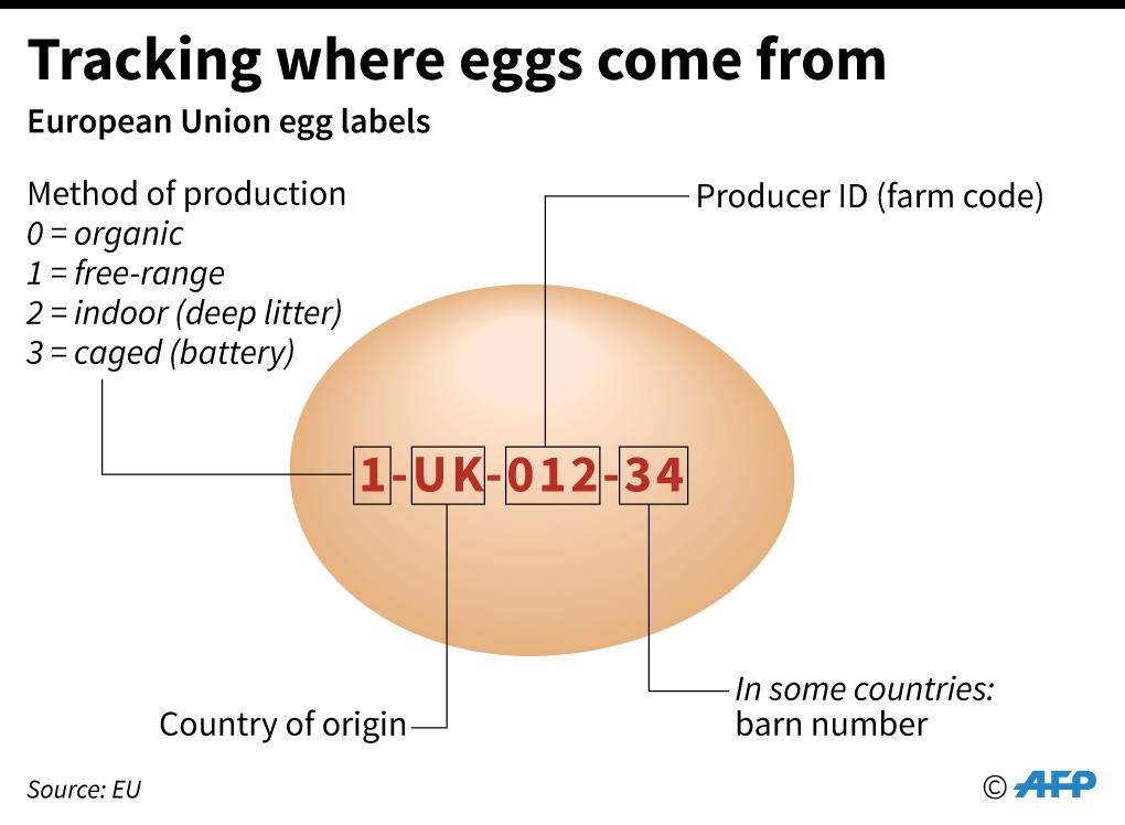 Tracking where eggs come from (AFP Photo/AFP)