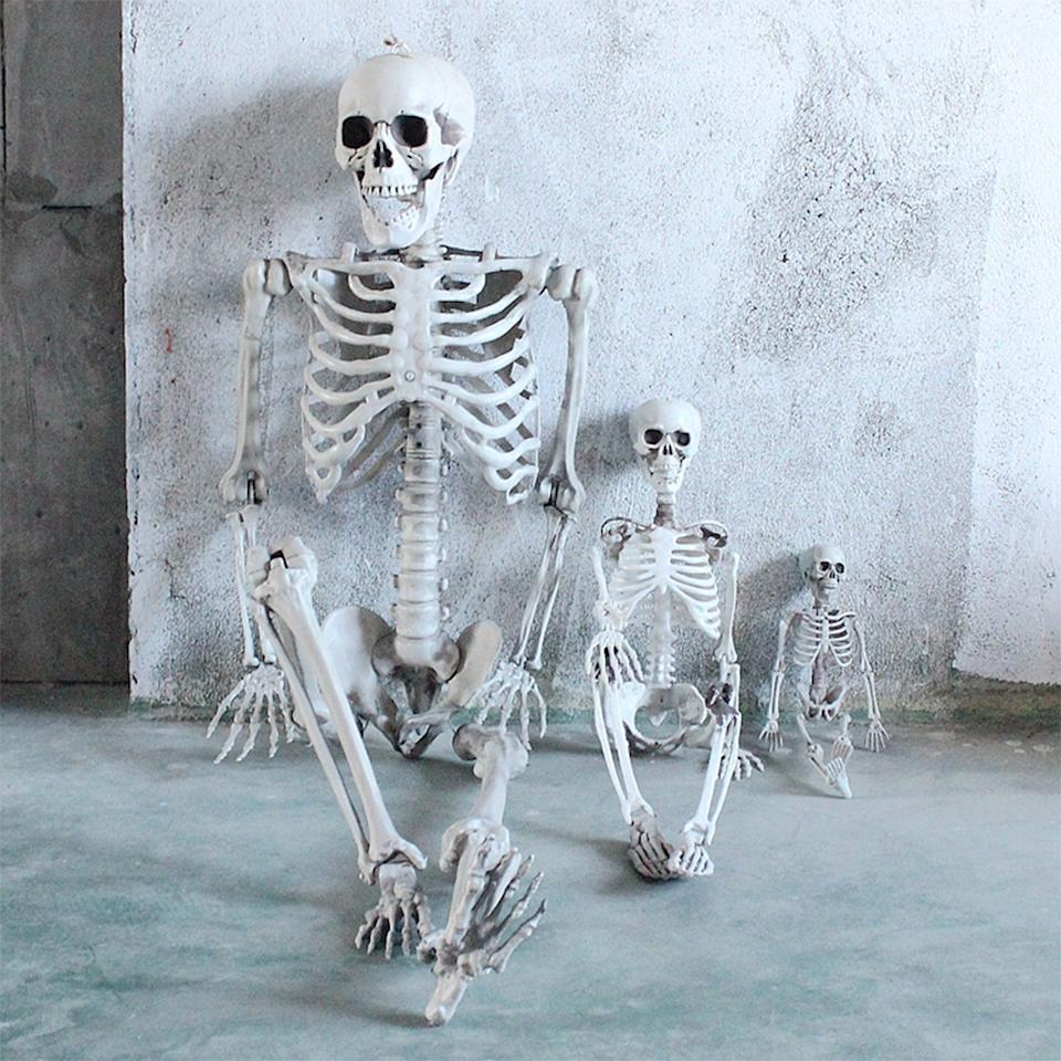 Moveable skeletons of different sizes are available at Walmart.