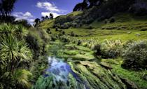 <p>Putaruru Blue Spring in Southern Waikato is Mother Nature at her finest.</p>