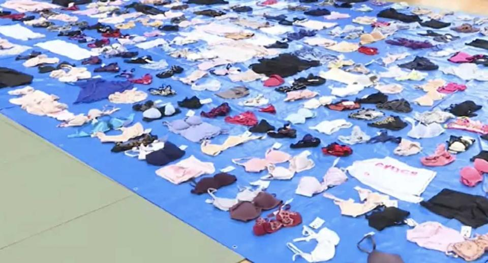Hundreds of pieces of women's underpants are pictured after being confiscated by police.