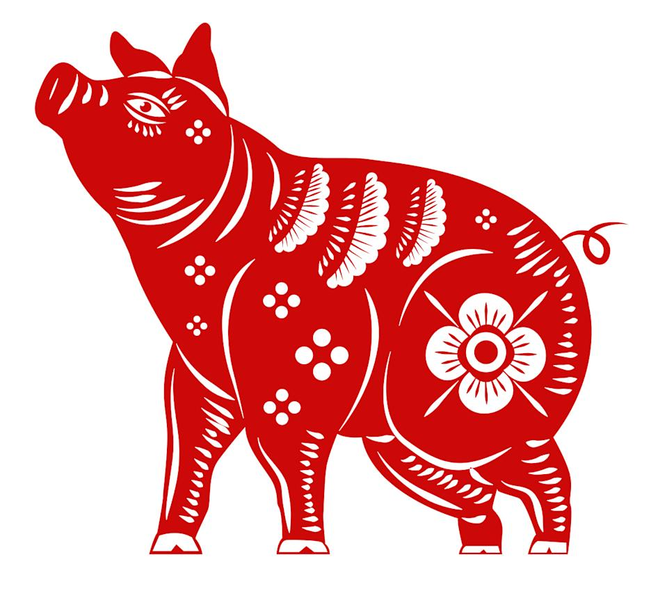 Pig zodiac. (Photo: iStock/Getty Images)