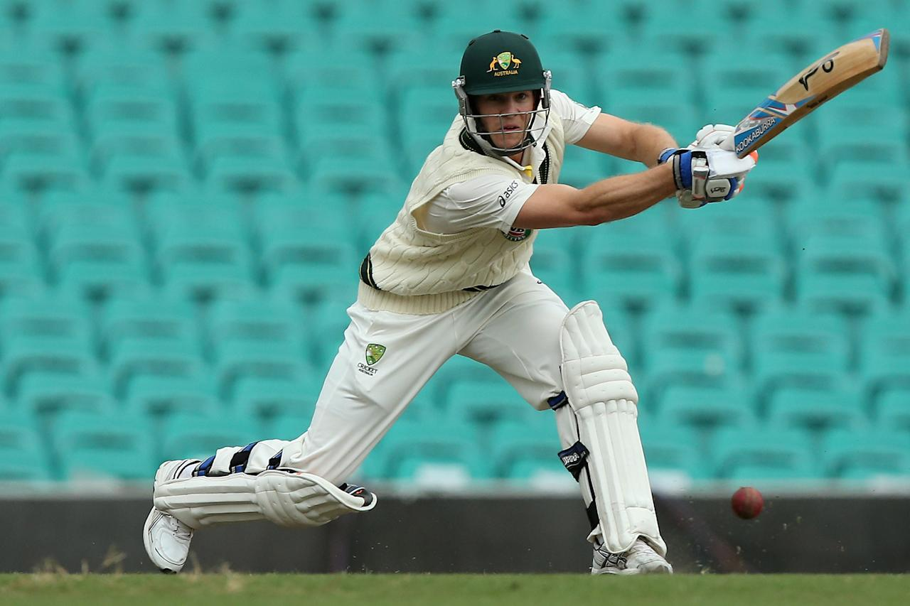 SYDNEY, AUSTRALIA - NOVEMBER 03:  Tim Paine of Australia A bats during day two of the International TOur Match between Australia A and South Africa at Sydney Cricket Ground on November 3, 2012 in Sydney, Australia.  (Photo by Chris Hyde/Getty Images)