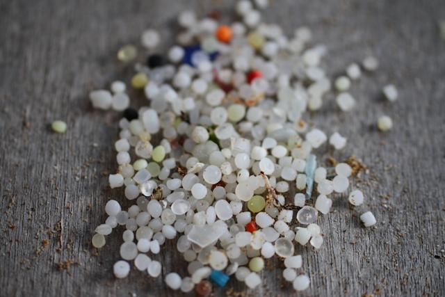 Nurdles, seen here, are small plastic pellets that pollute beaches and kill sea life. (Colleen Hughson)