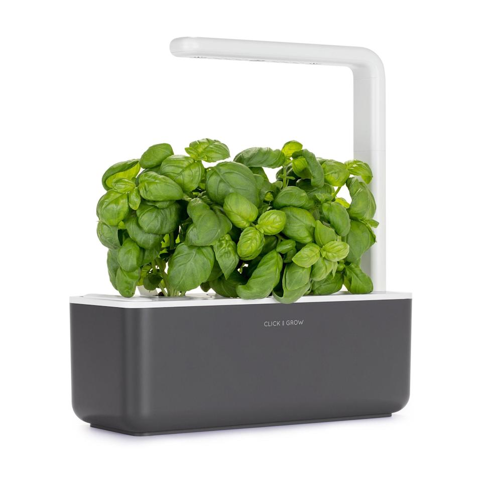 "<h2>Indoor Herb Garden</h2><br>Technology meets plant mom status with this indoor garden — LED grow lights ensure your plants thrive no matter the season.<br><br><strong>Click and Grow</strong> Indoor Herb Garden, $, available at <a href=""https://amzn.to/3lDEfEy"" rel=""nofollow noopener"" target=""_blank"" data-ylk=""slk:Amazon"" class=""link rapid-noclick-resp"">Amazon</a>"