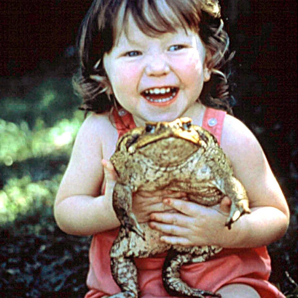 Monica and her pet cane toad, 1988 - Alamy