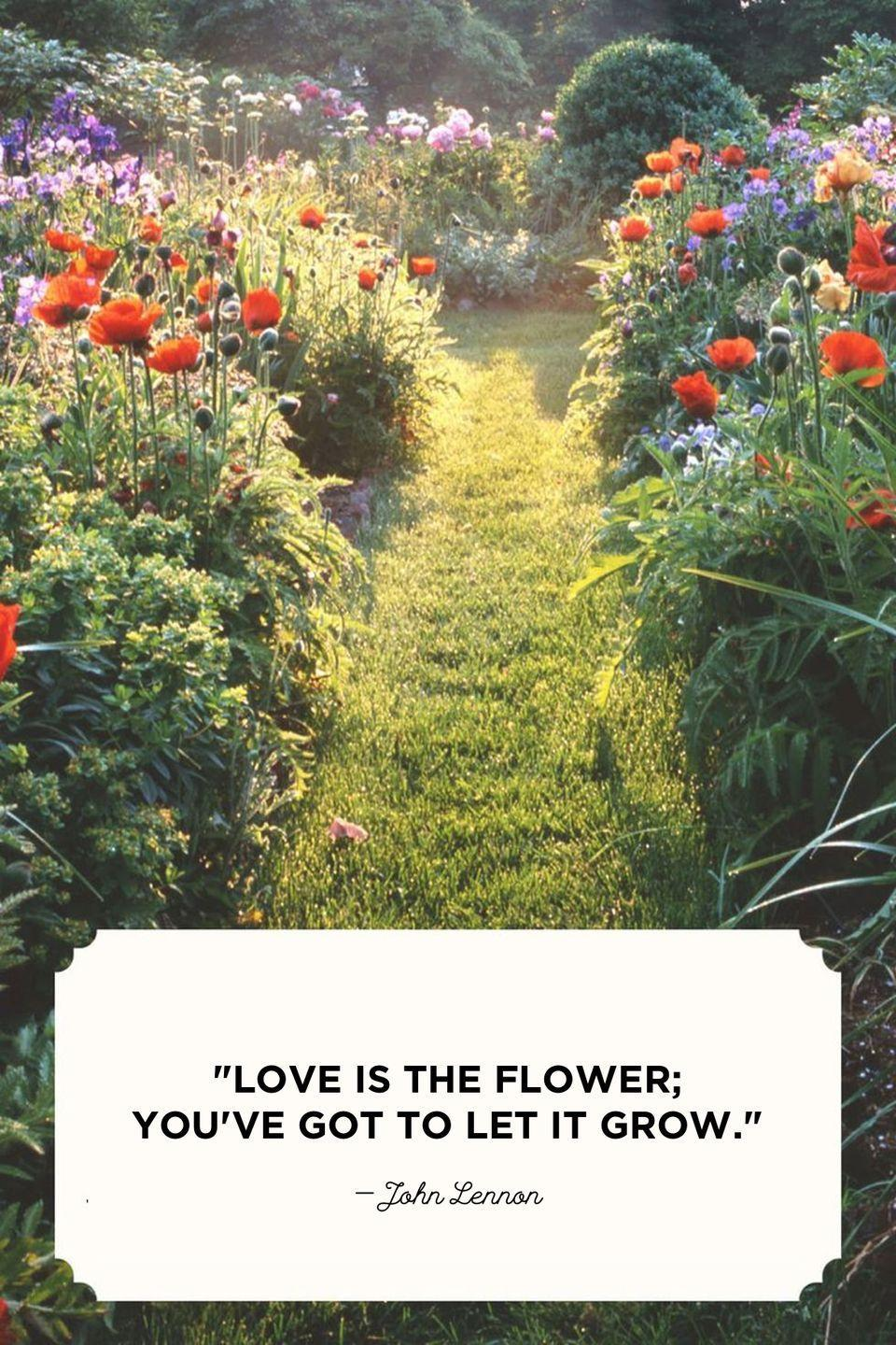"""<p>""""Love is the flower; you've got to let it grow.""""</p>"""