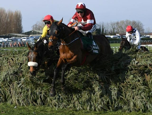 Tiger Roll ran an impressive prep race ahead of his tilt at an historic third Grand National triumph finishing second in the Cross Country Chase at the Cheltenham Festival (AFP Photo/Paul ELLIS)