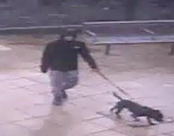 Police published CCTV footage of a dog's owner after the alleged attack. (North Wales Police)