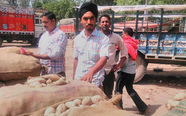 Potato glut: Punjab's farmers compelled to sell crop at Rs 1 per kg