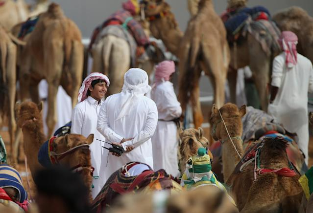 DUBAI, UNITED ARAB EMIRATES - APRIL 16: Handlers interacts during Al Marmoom Heritage Festival at the Al Marmoom Camel Racetrack on April 16, 2014 in Dubai, United Arab Emirates. The festival promotes the traditional sport of camel racing within the region. (Photo by Francois Nel/Getty Images)