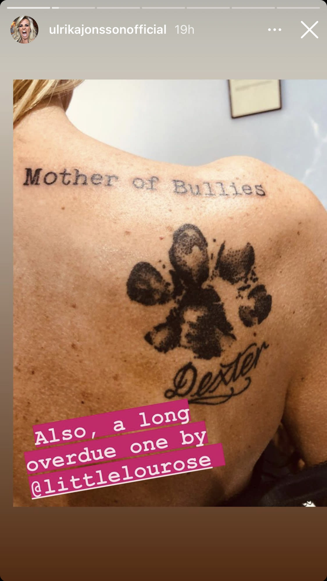 Ulrika Jonsson reveals two huge dog tribute tattoos and a new piercing on her Instagram story.
