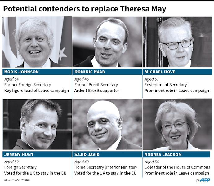 Potential candidates to succeed Theresa May as UK Conservative Party leader and therefore prime minister. (AFP Photo/)