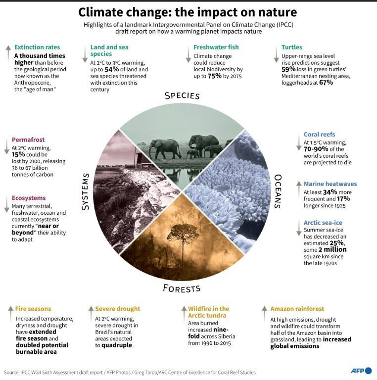 Highlights of a landmark Intergovernmental Panel on Climate Change (IPCC) draft report on the effects of a warming planet on nature