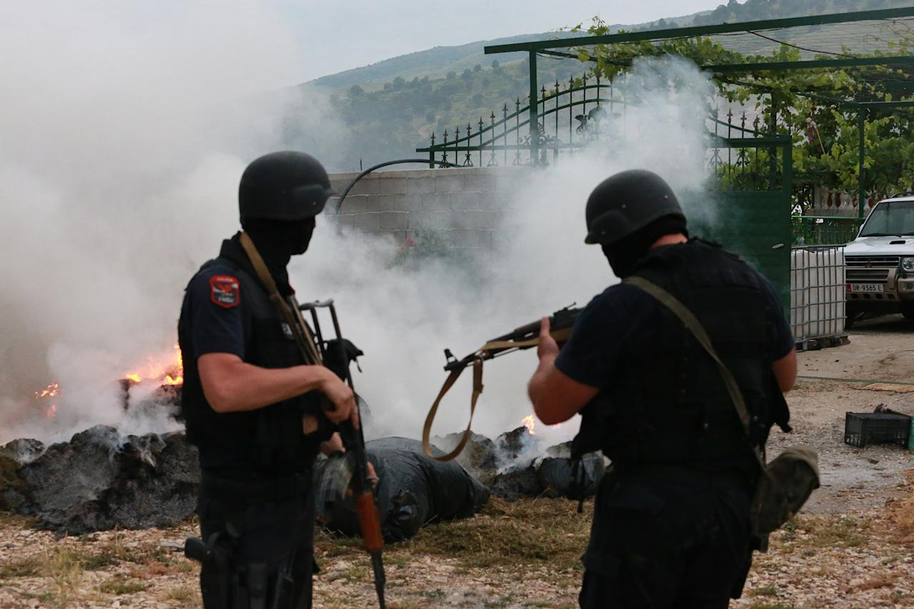 Albanian police burn cannabis seized in Lazarat village, 230 kilometers (140 miles) south of capital Tirana, Tuesday, June 17, 2014. Hundreds of Albanian police, backed by armored vehicles, stormed a lawless southern village Monday after suspected marijuana growers allegedly fired rocket-propelled grenades, mortars and machine guns at officers during a drug raid. (AP Photo/Hektor Pustina)