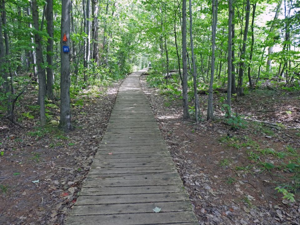 Rideau Trail. Credit: Marlis Butcher/Submitted