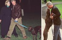 <p>From left: US President Bill Clinton and First Lady Hilary Clinton with chocolate labrador retriever Buddy; President Bill Clinton is greeted by his Buddy as he arrives at the White House.</p>