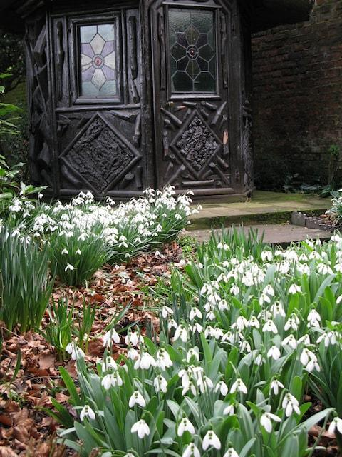 Peckover House & Garden - Credit: national trust