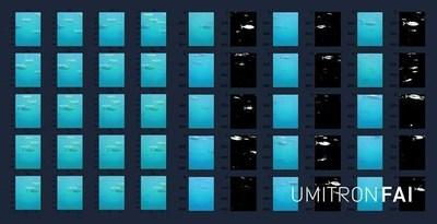 Aquaculture technology provider UMITRON launches Fish Appetite Index (FAI), the world's first real-time ocean-based fish appetite detection system.