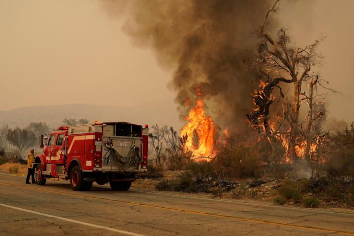 A San Bernardino County Fire Department member keeps an eye on a flareup from the Bobcat Fire on Sept. 19, 2020, in Valyermo, Calif.