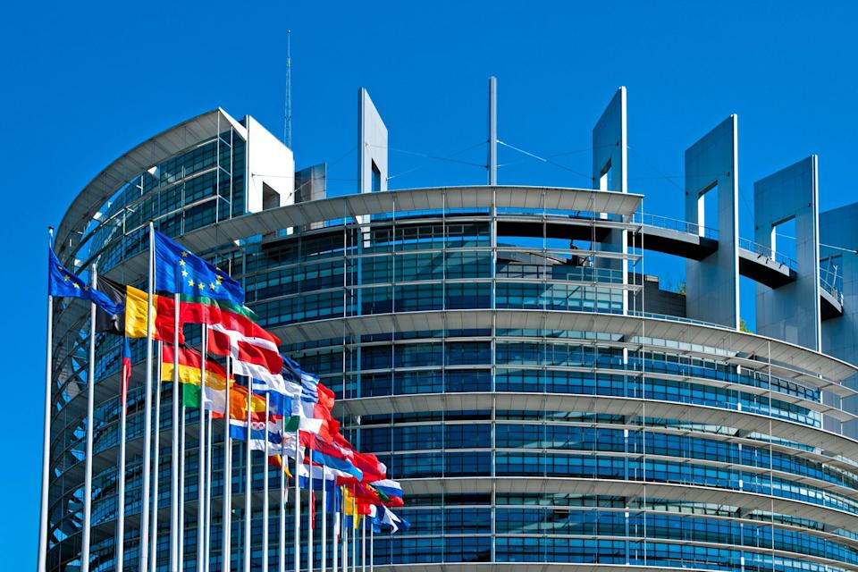 The European Parliament building in Strasbourg, where ordinary plenary sessions are held  (Getty Images)