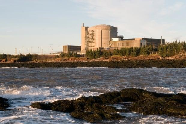 The Point Lepreau nuclear generating station appeared to have its reliability issues resolved in the last two years, until the utility had a surprise problem with its turbines in January.