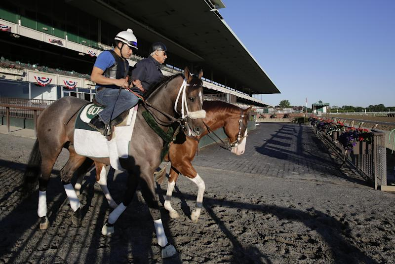 Preakness winner Oxbow, left, enters the track for a light workout, Tuesday, June 4, 2013 at Belmont Park in Elmont, N.Y. Oxbow is entered in Saturday's Belmont Stakes horse race. Trainer D. Wayne Lukas is at right (AP Photo/Mark Lennihan)