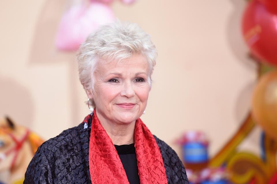 LONDON, ENGLAND - NOVEMBER 05:  Actress Julie Walters attends the 'Paddington 2' premiere at BFI Southbank on November 5, 2017 in London, England.  (Photo by Stuart C. Wilson/Getty Images)