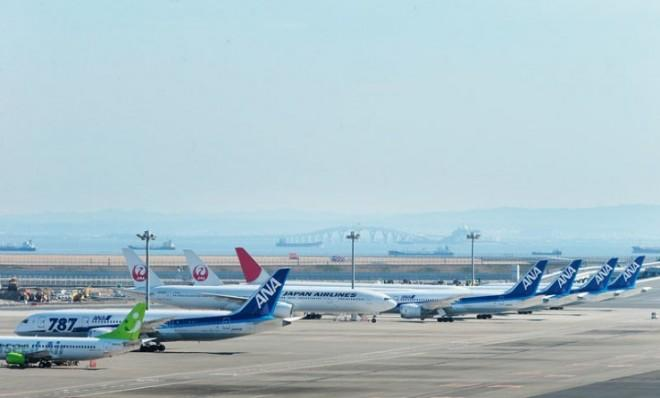 A row of grounded Boeing 787 Dreamliner planes at Tokyo International Airport on Jan. 31.