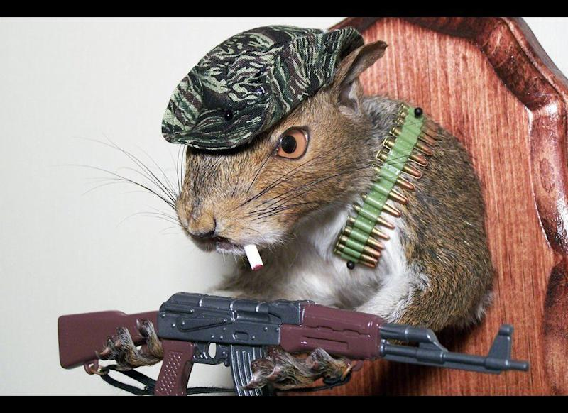 Rick Nadeau has saved up quite a nut by creating taxidermied squirrels that he puts in unusual outfits. He sells his works starting at $65 all the way up to $200.