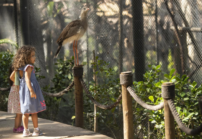 Children visit the aviary at BioParque, in Rio de Janeiro, Brazil, Wednesday, May 5, 2021. BioParque reopened to the public in March, after privatization of Rio's dilapidated zoo and almost 17 months of renovations. (AP Photo/Bruna Prado)
