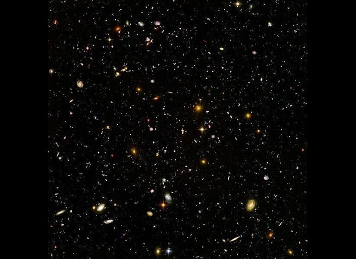 I don't think the human race will survive the next thousand years, unless we spread into space. There are too many accidents that can befall life on a single planet. But I'm an optimist. We will reach out to the stars.