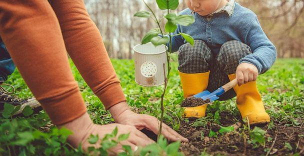PHOTO: Little boy and his father gardening in spring (STOCK PHOTO/Getty Images)
