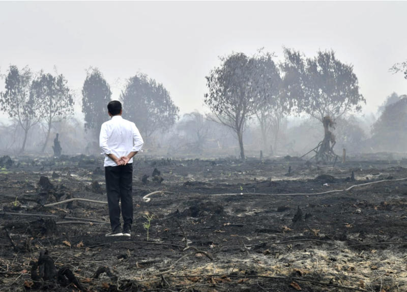 In this photo released by Indonesian Presidential Secretariat, Indonesian President Joko Widodo inspects a burnt forest in Pelalawan, Riau province, Indonesia, Tuesday, Sept. 17, 2019. Widodo traveled to the area hardest hit by forest fires, as neighboring countries urged his government to do more to tackle the blazes that have spread a thick, noxious haze around Southeast Asia. (Laily Rachev, Indonesian Presidential Secretariat via AP)