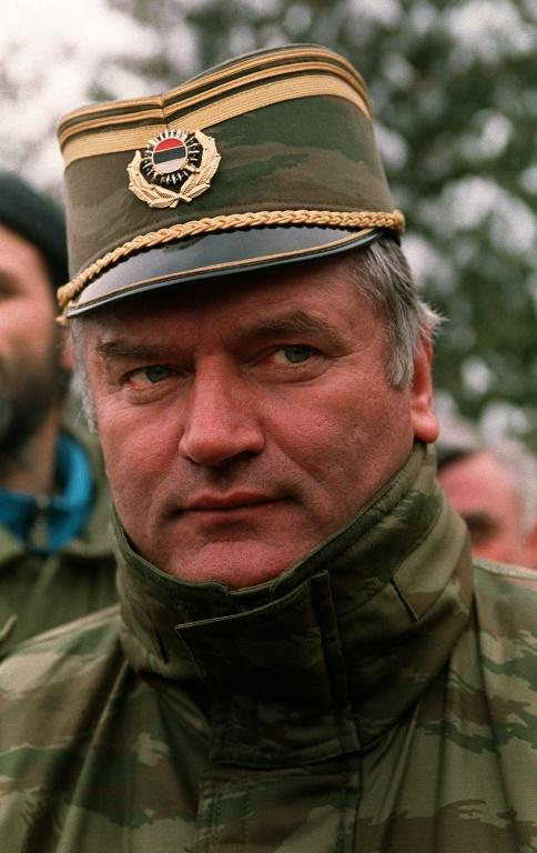 Mladic, pictured in 1994, protested his innocence throughout the trial