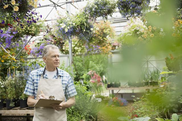 <p>No. 7 lowest-paid job: Nursery and greenhouse worker<br>Average full-time hourly wage: $13.25<br>(Hero Images / Getty Images) </p>