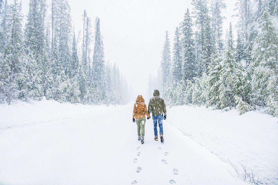 <p>Just because it's winter doesn't mean you can't be active together. Find some well-worn trails that don't get too slippery and take in the stupidly romantic natural surroundings. Bring along a camera for some cute candids too. </p>