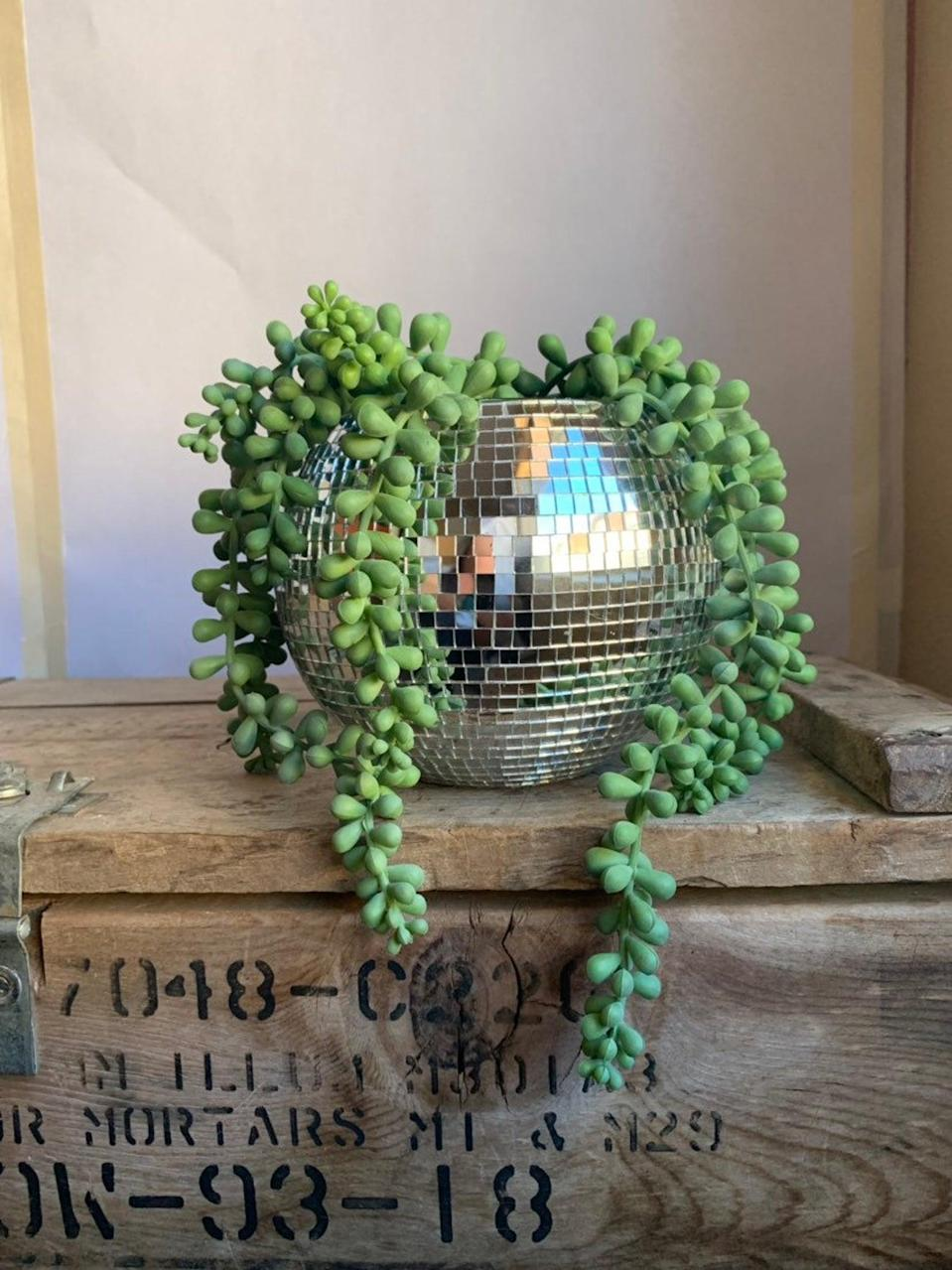 """<h2>Disco Ball Planter</h2><br>If you love your plant but feel like it just needs a little extra """"pizazz"""" then it's time to invest in a disco ball planter. <br><br><em>Shop</em> <strong><em><a href=""""https://fave.co/37Yrb8v"""" rel=""""nofollow noopener"""" target=""""_blank"""" data-ylk=""""slk:OriginalDiscoPlanter"""" class=""""link rapid-noclick-resp"""">OriginalDiscoPlanter</a></em></strong><br><br><br><br><strong>OriginalDiscoPlanter</strong> Disco Ball Planter, $, available at <a href=""""https://go.skimresources.com/?id=30283X879131&url=https%3A%2F%2Ffave.co%2F3o7FrBO"""" rel=""""nofollow noopener"""" target=""""_blank"""" data-ylk=""""slk:Etsy"""" class=""""link rapid-noclick-resp"""">Etsy</a>"""