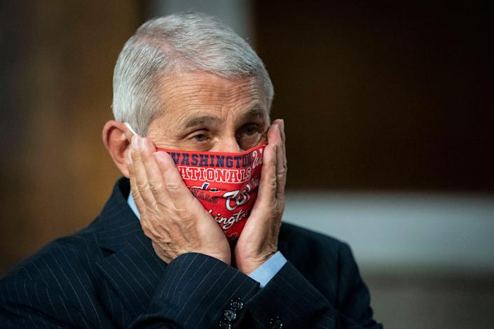 Dr. Anthony Fauci at a Senate hearing on June 30.