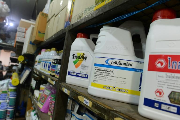 Containers of pesticide and weed killer containing paraquat and glyphosate on sale at a gardening shop in Bangkok (AFP Photo/Romeo GACAD)