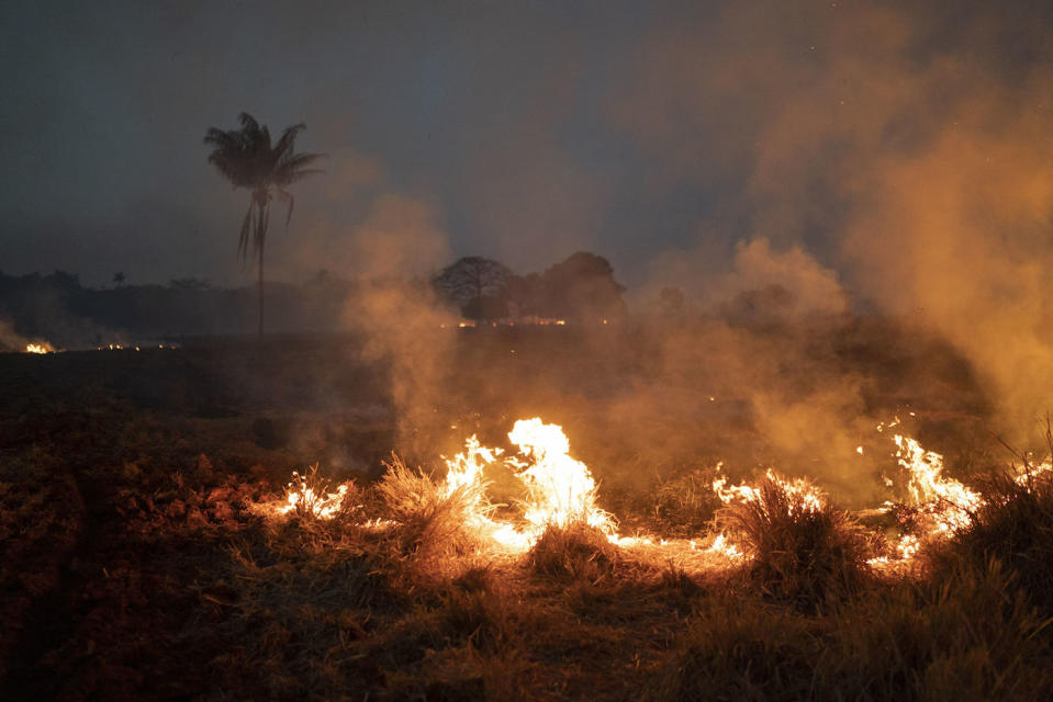 A fire burns a field on a farm in the Nova Santa Helena municipality, in the state of Mato Grosso, Brazil (Picture: AP)