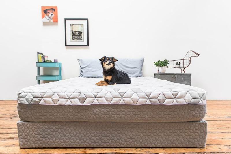 Layla Is A Mattress Delivery Company That Also Throws In