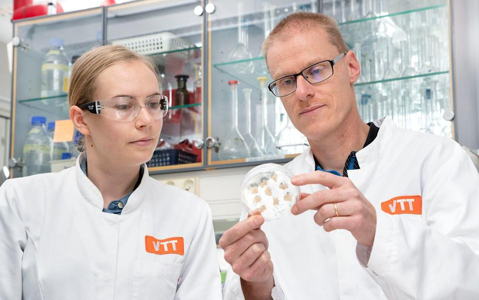 Dr Heiko Rischer (right) predicts that in four years, production of lab-grown coffee will be approved - VTT
