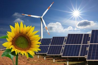 power, generator, green, yellow, transition, sunny, sunflower, change, light, sun, energy, panel, wind, sustainable, collector, renewable, ecological, eco, future, flower,
