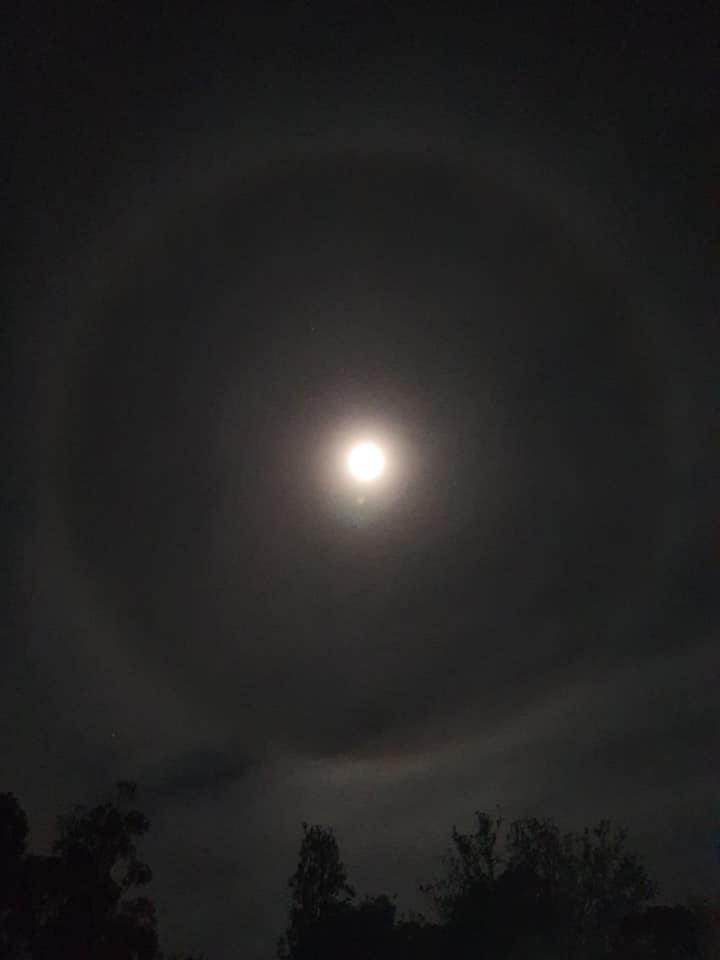 This photo was taken in Canberra on Wednesday night and shows a distinct halo around the moon. Source: Facebook