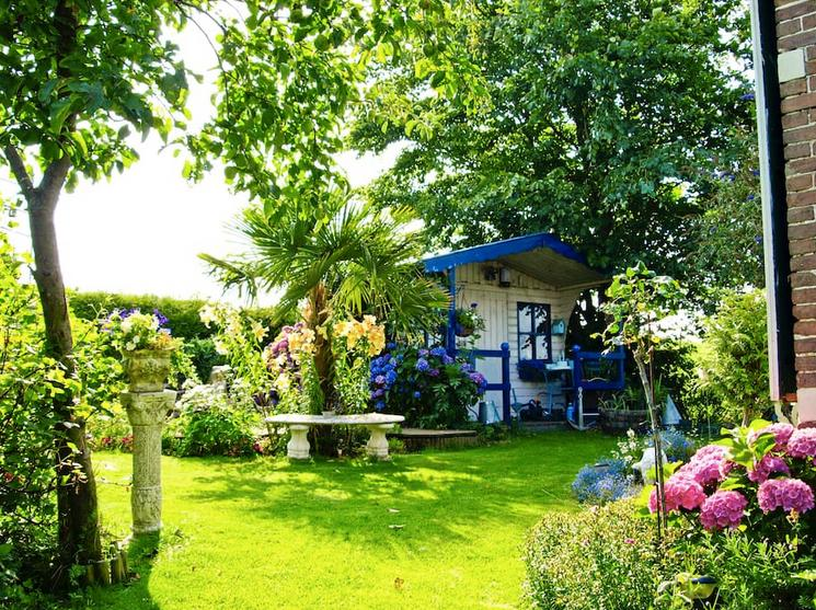 <p>The home sits on a beautifully lush property. (Airbnb) </p>
