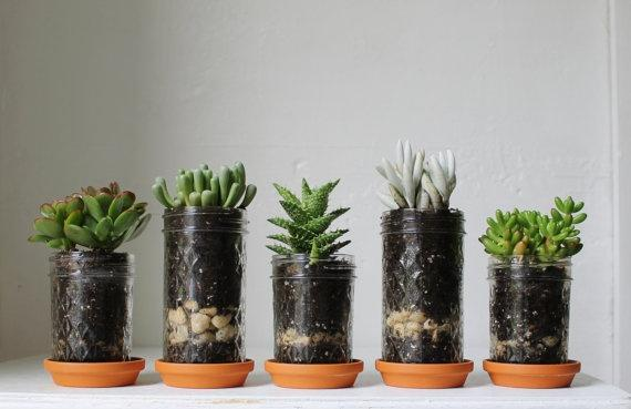 """<div class=""""caption-credit""""> Photo by: BootsNGus</div><b>Add Some Green</b> <br> A few small plants will make your room feel cozy and will help you hold on to summer all year round. We love these tiny, jam jar plants -- just don't forget to water them! <br> <b><i><a rel=""""nofollow noopener"""" href=""""http://blogs.babble.com/family-style/2012/09/01/25-dorm-decor-diy-ideas/#a-rug-headboard-idea"""" target=""""_blank"""" data-ylk=""""slk:For 13 more ways to make your dorm room stylish and functional, visit Babble!"""" class=""""link rapid-noclick-resp"""">For 13 more ways to make your dorm room stylish and functional, visit Babble!</a></i></b> <br>"""