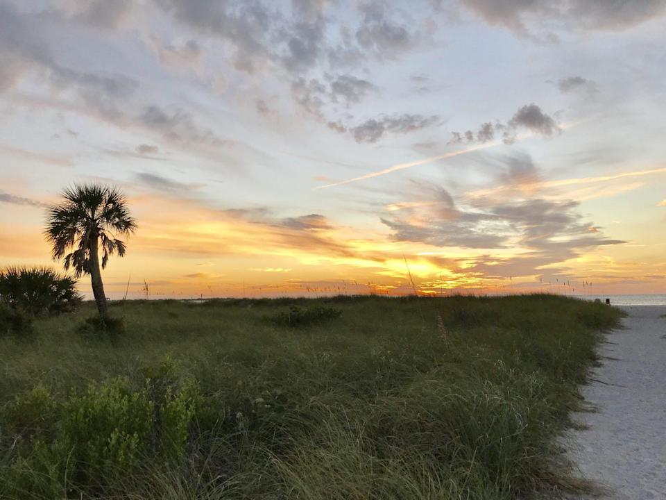 """<p>An unspoiled paradise, <a href=""""https://www.floridastateparks.org/parks-and-trails/caladesi-island-state-park"""" rel=""""nofollow noopener"""" target=""""_blank"""" data-ylk=""""slk:Caladesi Island"""" class=""""link rapid-noclick-resp"""">Caladesi Island</a> is located in the blue-green waters of the Gulf of Mexico, just north of <a href=""""https://www.southernliving.com/travel/florida/clearwater-florida-travel-guide"""" rel=""""nofollow noopener"""" target=""""_blank"""" data-ylk=""""slk:Clearwater"""" class=""""link rapid-noclick-resp"""">Clearwater</a>. Only accessible by boat, set sail on the daily ferry and leave the hustle and bustle of the mainland behind. Before it was a state park, the island was the childhood home of author Myrtle Scharrer Betz. The only child ever born on the island, the author was the daughter of 1880's homesteader Henry Scharrer, and she placed a deed restriction on the property in 1946 to ensure that no unnecessary alterations could be made to the 157 acres. Thanks to her, the island is pristine to this day.</p>"""