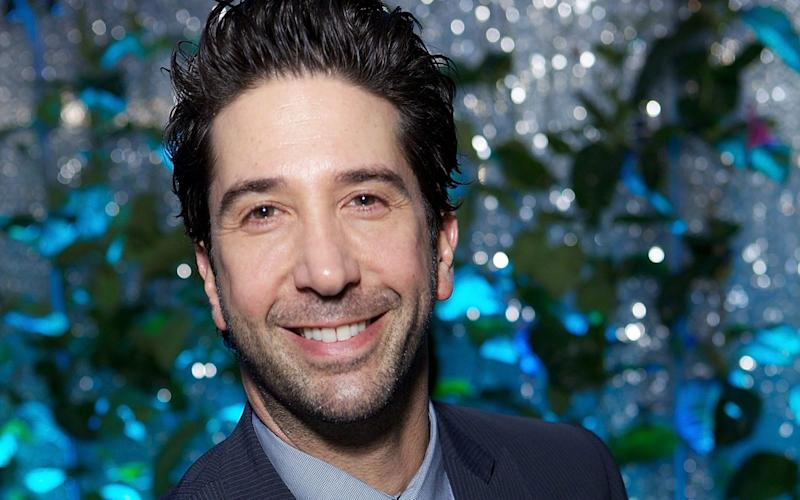 David Schwimmer - 2013 Getty Images
