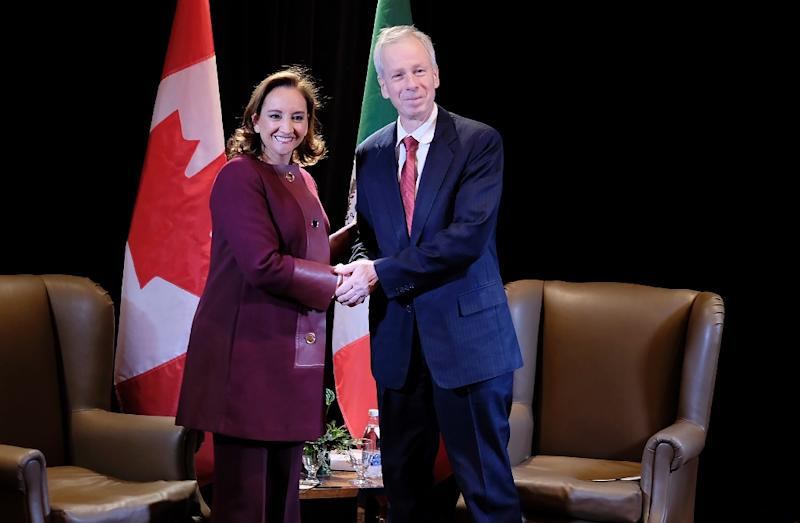 Canadian Foreign Minister Stephane Dion and his Mexican counterpart Claudia Ruiz Massieu on January 29, 2016 in Quebec City (AFP Photo/Florence Cassisi)